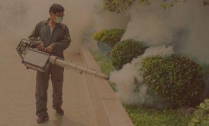 Phun thuốc diệt mối côn trùng