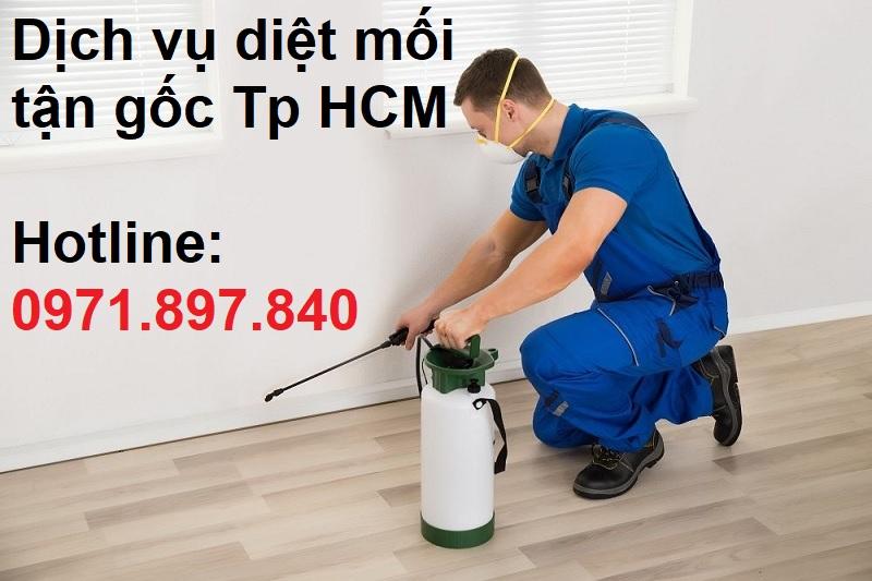 dich vu diet moi tan goc tai tphcm