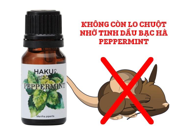 loai tinh dau bac ha duoi chuot hieu qua hien nay