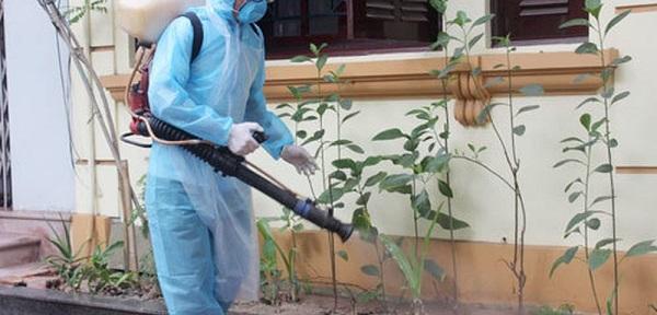 dịch vụ phun thuốc diệt côn trùng tại Vũng Tàu