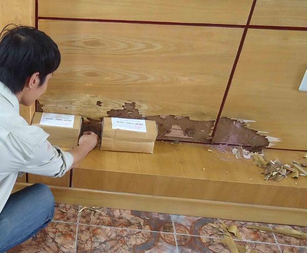 cách diệt mối gỗ tận gốc