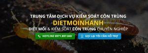 công ty cung cấp dịch vụ diệt mối tại quận Tân Bình