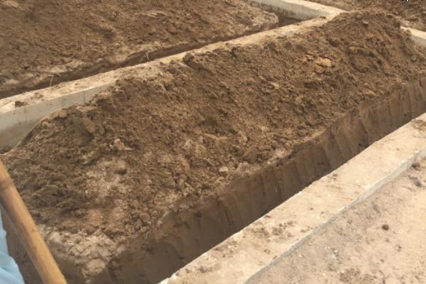 Chi tiết báo giá phòng chống mối xây dựng công trình