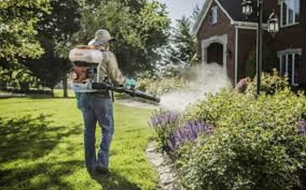 phun thuốc để tiêu diệt côn trùng